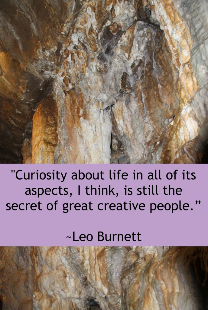 """Curiosity about life in all of its aspects, I think, is still the secret of great creative people."" -Leo Burnett"