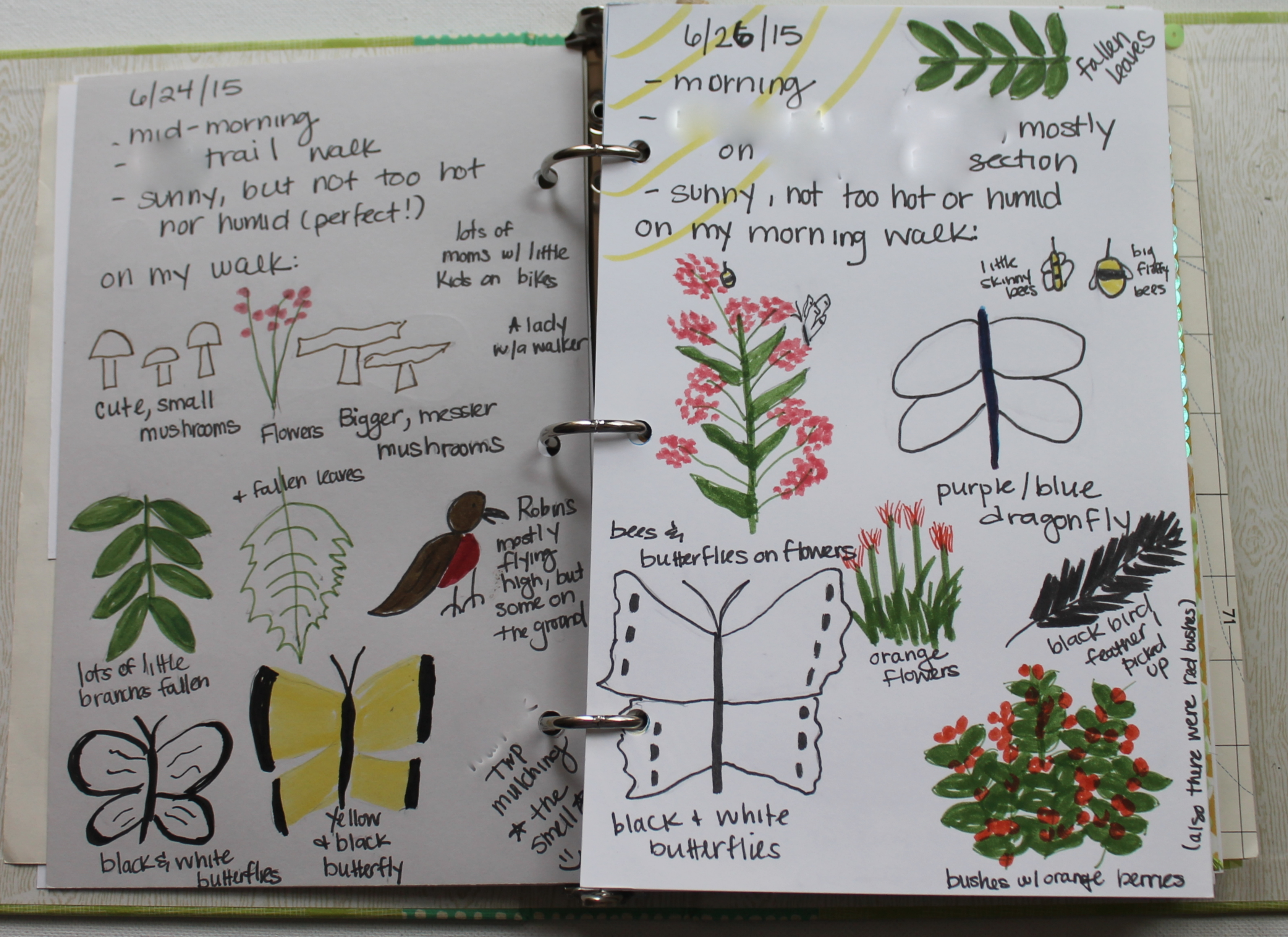 My Nature Journal | Emerging Creatively Jewelry Tutorials