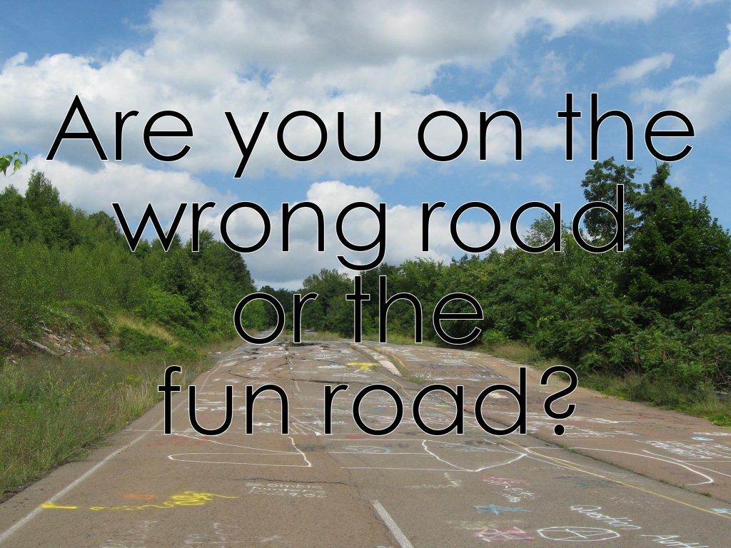 Are you on the wrong road or the fun road?